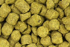 Granulated dried hops  background. Granulated dried hops abstract background Stock Image
