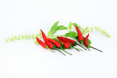 The red peppers be spicy. Royalty Free Stock Photography