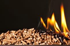 Granule en bois Photos libres de droits