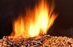 Granule en bois Image stock