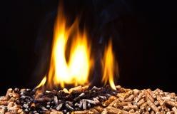 Granule en bois Photo stock