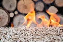 Granules Biomas Photos libres de droits