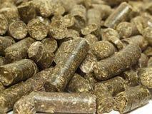 Granules d'herbes macro. nourriture pour le cheval et l'animal de ferme Image libre de droits