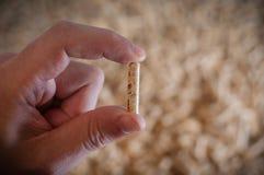 Granules en bois pour la chauffage Image libre de droits