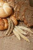 Granuli del frumento e del pane Fotografie Stock