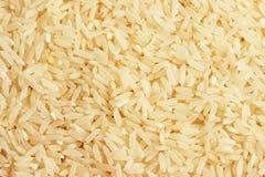 Granuli del riso Immagine Stock