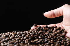 Granuli di Cofee Immagine Stock Libera da Diritti