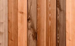Granuli di legno differenti Fotografie Stock Libere da Diritti