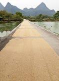 Granuli di secchezza del riso lungo la via Immagini Stock