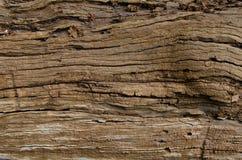 Granuli su legno Fotografia Stock Libera da Diritti