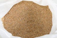 Granulo del frumento nel sacco Fotografia Stock