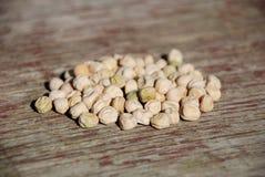 Granulo del seme di pisello Fotografia Stock