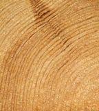 Granulo di legno immagini stock