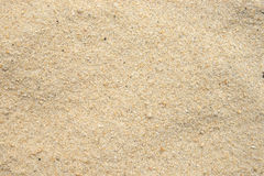 Granulo di sabbia della spiaggia Fotografia Stock Libera da Diritti
