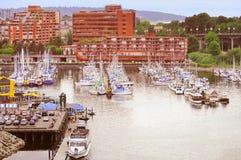 Шлюпки и яхты островом Granville Стоковое Фото