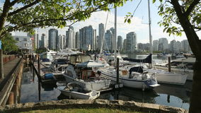 Granville Island Hotel Marina stock video footage
