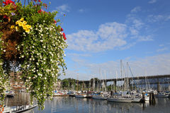 Granville Island Marina Flower Basket, Vancouver Royalty Free Stock Photo