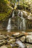 Granville Moss Glen Falls royalty-vrije stock afbeelding