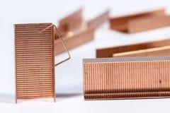Grapas del cobre en blanco Imágenes de archivo libres de regalías