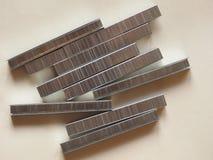 grapas resistentes Imágenes de archivo libres de regalías