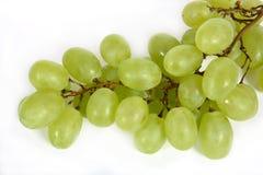 Grape. The Fruits. Fresh grape Stock Photo