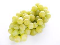 Grape stock photos