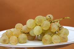 Grape. Bunch of grapes, yellow plate, studio shot Royalty Free Stock Image