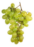 Grape. Isolated on white background,  path Stock Photography