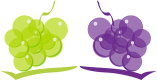 Grape. Stock Images