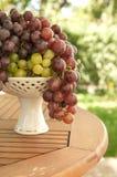 Grape Royalty Free Stock Photography