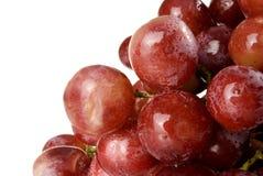Grape. Wet red grape close up Stock Photo