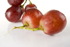 Grape. Wet red grape close up Royalty Free Stock Photo