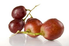 Grape. Wet red grape close up Royalty Free Stock Images