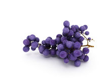 Grape. Branch of grapes  on a white background Royalty Free Stock Photography