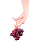 Grape. Woman hand with grape on white background Stock Photo