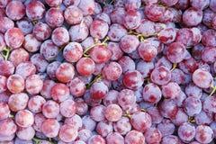 Grape. The background of ripe grape Stock Photo