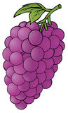 Grape. Illustration of a purple delicious grape Royalty Free Stock Photography