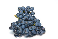 Grape. Fresh grape cluster on a white background Royalty Free Stock Photography