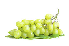 Grape Royalty Free Stock Image