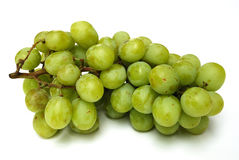 Free Grape Stock Photography - 5876412