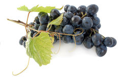 Grape. Bunch of raw grape isolated over white background Stock Photo