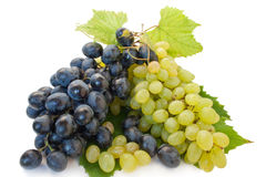 Grape. Bunch of raw grape isolated over white background Royalty Free Stock Photography