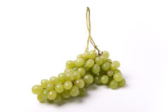 Grape. Green grape branch on white Royalty Free Stock Image