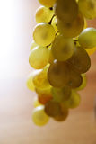 Grape. On the wood table Royalty Free Stock Images