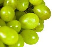 Free Grape Stock Photos - 8472663