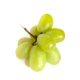 Grape. Some green grape isolated on white background royalty free stock images