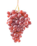 Grape. Red grape of the withe background Royalty Free Stock Photo