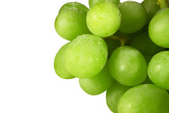 Free Grape Royalty Free Stock Images - 9428619