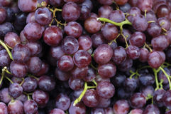 Grape. Close up fresh Grape background stock photography