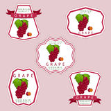 The grape. Abstract vector illustration logo for whole ripe berry grape with green stem leaf cut sliced on background.Grape drawing consisting of tag label peel Royalty Free Stock Photo